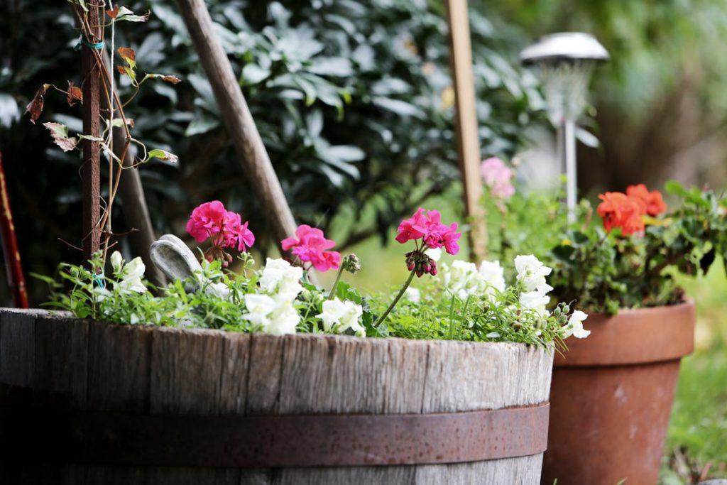 Oświetlenie ogrodu w pytaniach i odpowiedziach
